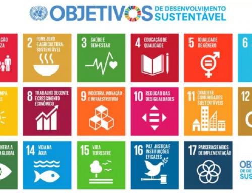 O lugar da cultura nos Objetivos de Desenvolvimento Sustentável (ODS)